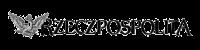 Rzeczpospolita logo transpatent